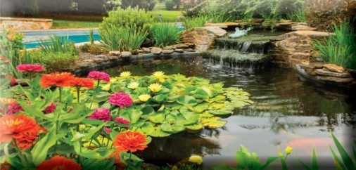 How to Winterize Ponds and Other Water Features