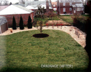DiSabatino Has Been Solving Backyard Drainage Problems For More Than 20  Years. Our Expert Professionals Evaluate The Grade Of Your Yard And  Establish The ...
