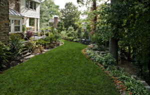 4 Steps to Optimal Plant Health for Your Landscaping: