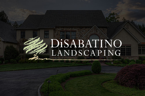 DiSabatino Landscaping