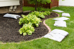 Mulch is an excellent way to keep new plantings healthy