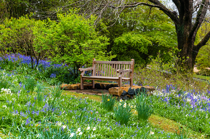 Secluded garden bench